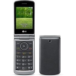 Entfernen Sie LG SIM-Lock mit einem Code LG G350
